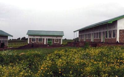 Amani Kuresoi Primary